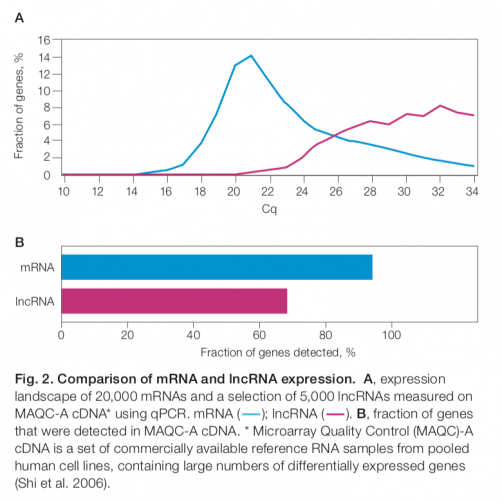 Comparison of mRNA and lncRNA expression